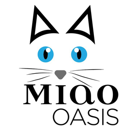 Allevamento razza Ragdoll Como - Miao Oasis